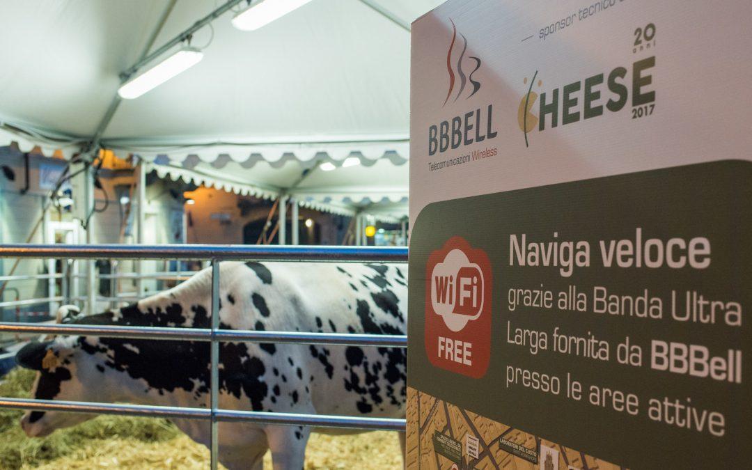 Per il 2° anno BBBell sarà Sponsor Tecnico di Cheese